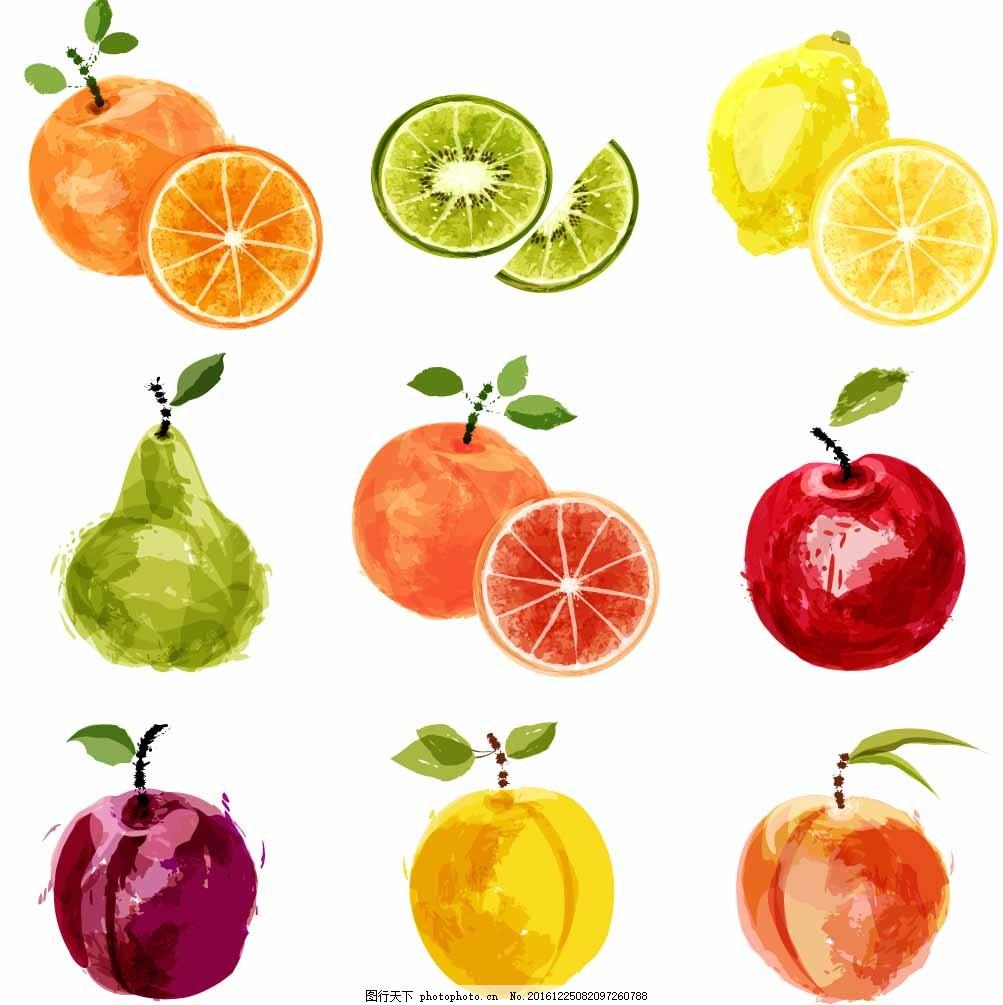 手绘水果插画 橙子 桃子