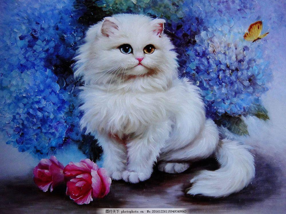 可爱猫咪图片带文字