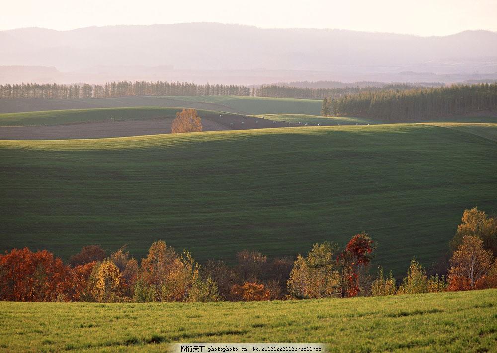 自然风景图片图片素材 四季风景 美丽风景 美景 自然景色 树木 田园风