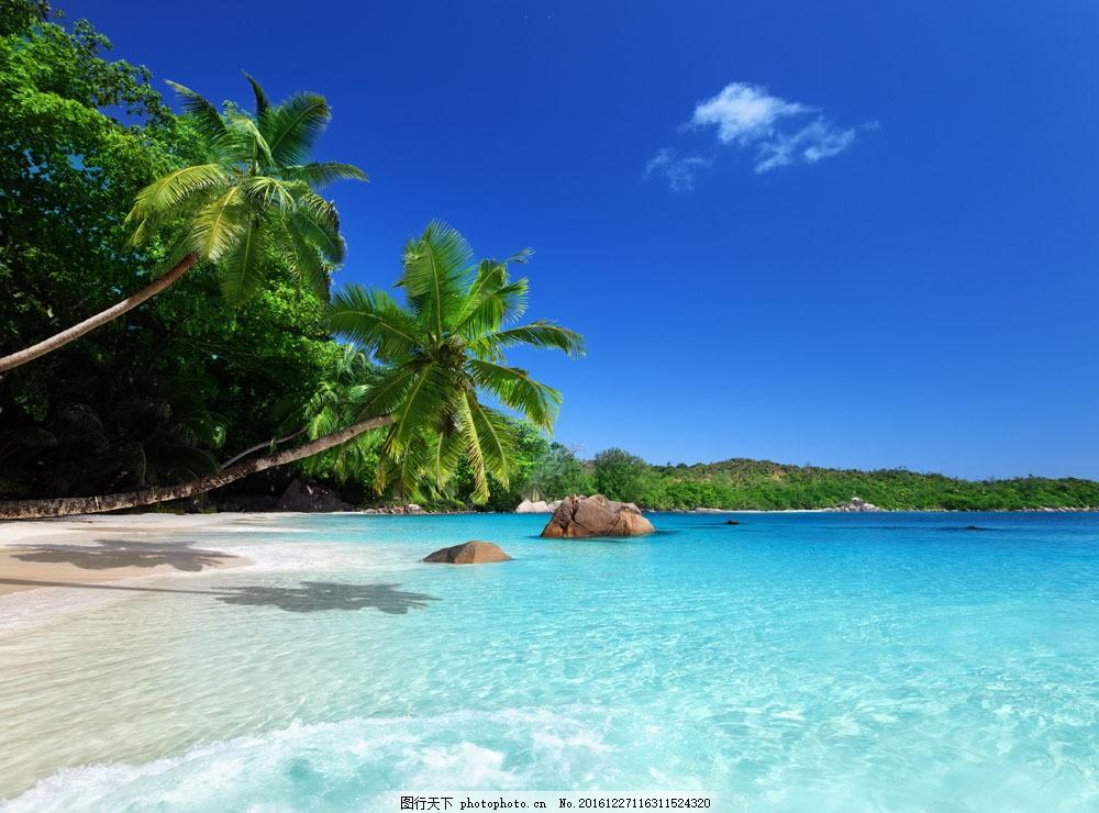 海边美景图片素材 海边 沙滩 海水 蓝天 椰树 大海图片 风景图片 图片
