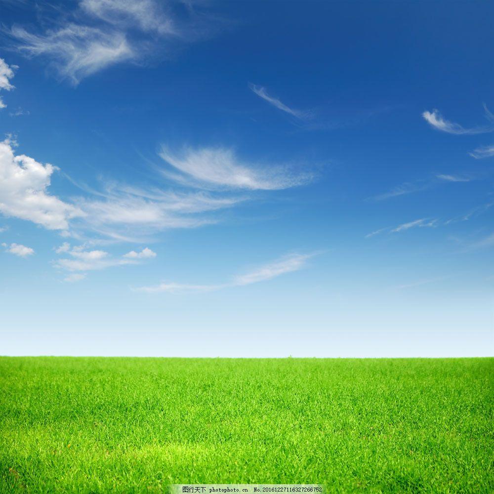 原野上的春色高清风景图片图片