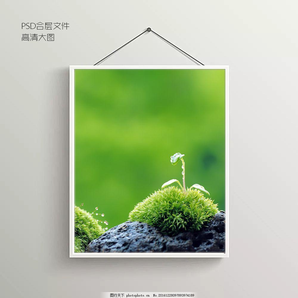 发芽的种子无框装饰画 青芽 背景图 抽象背景图 室内背景图 玄关