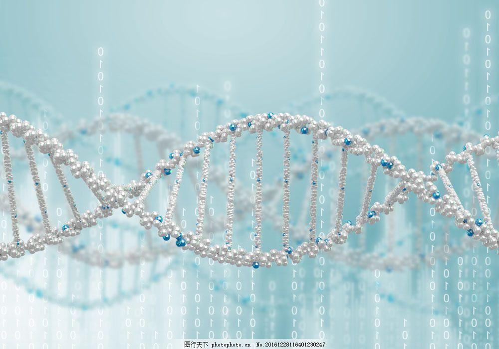 dna分子结构图片