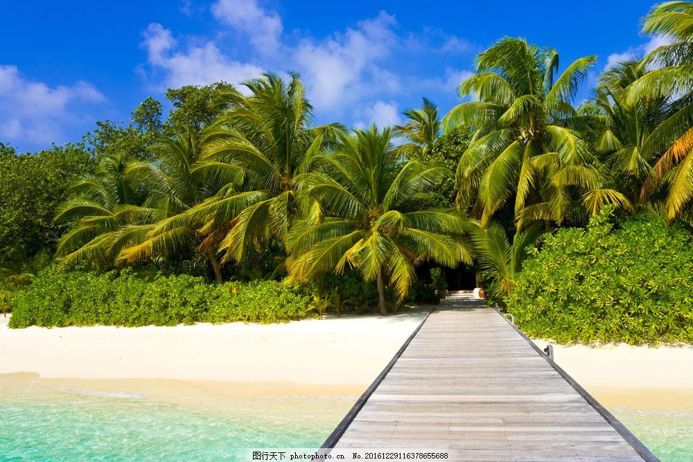 热带码头风景图片