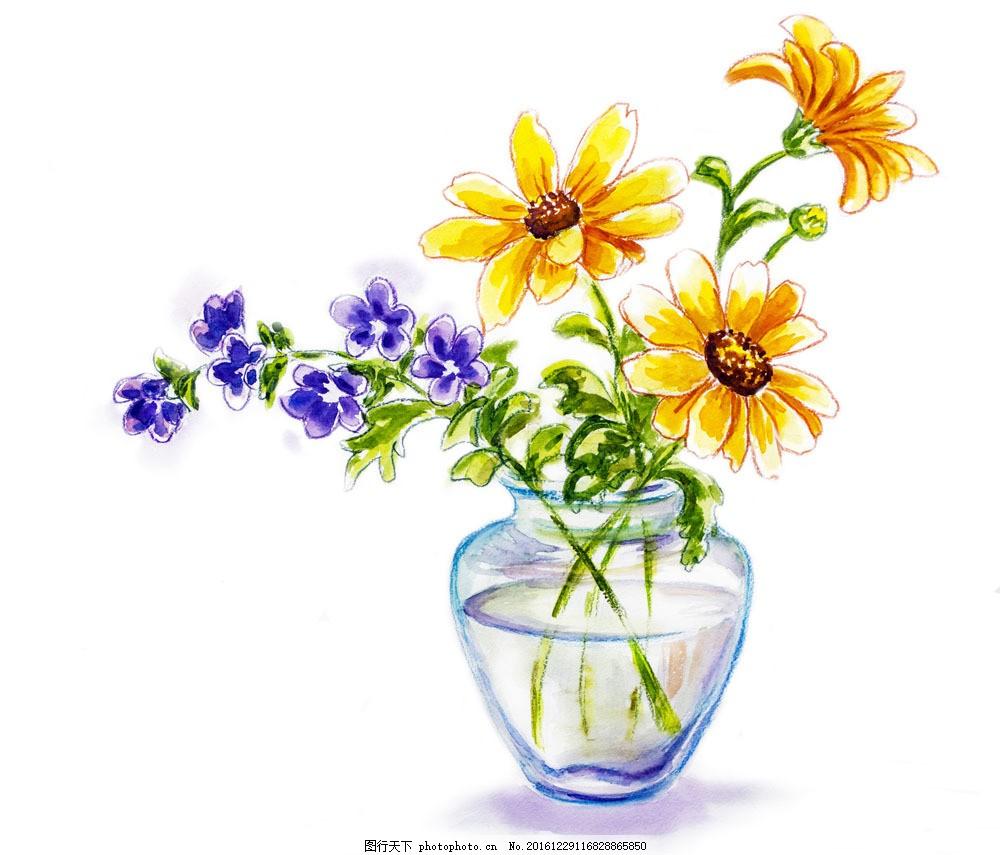 手绘花朵 手绘花朵图片素材 手绘花闰 植物 鲜花 花卉 花草树木