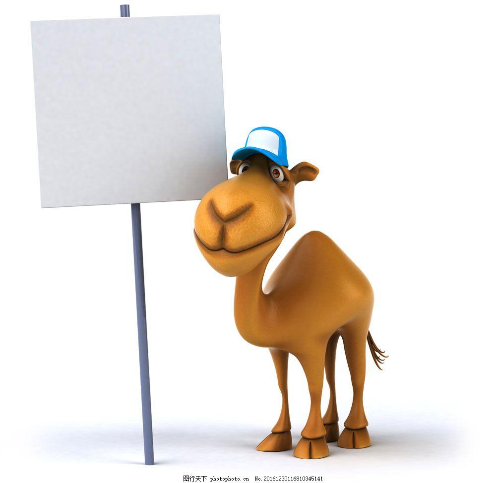 骆驼与广告牌 骆驼与广告牌图片素材 卡通骆驼 卡通动物 生物世界图片