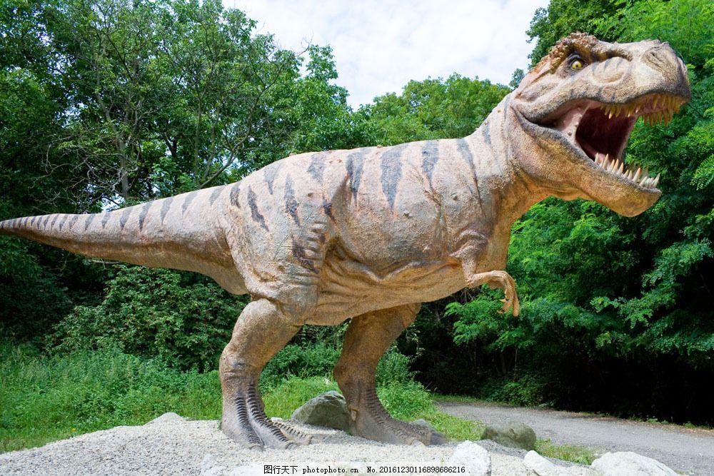 恐龙图片素材 恐龙 动物世界 史前动物 霸王龙 陆地动物 生物世界