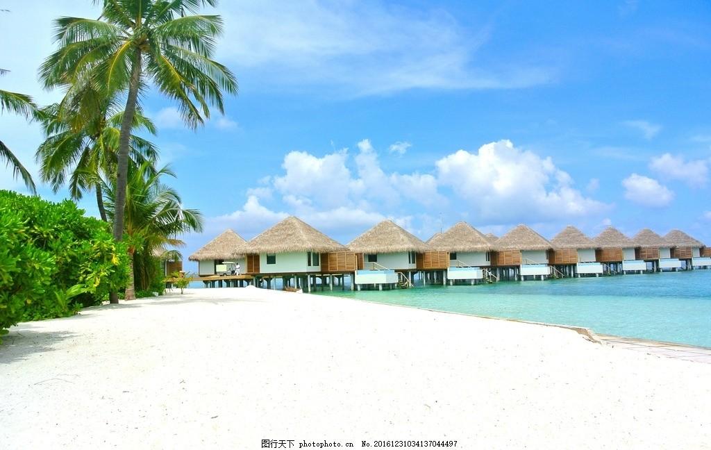 海边 芭蕉树 海景 夏日 海滩 风景 摄影 自然景观 自然风景 72dpi jpg